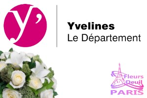 Sympathy flowers delivery  YVELINES 78