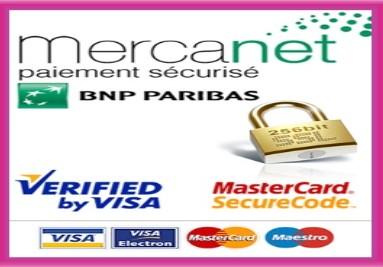 secure paiment